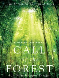 10/27 KEC PRESENTS Call of the Forest: The forgotten wisdom of trees