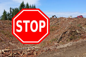 Stop Clearcutting